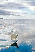 BEA 06 KH0018 01