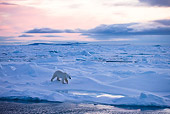 BEA 06 KH0020 01