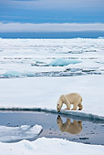 BEA 06 KH0021 01