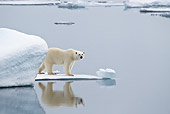 BEA 06 KH0022 01