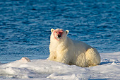 BEA 06 KH0047 01