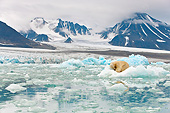 BEA 06 KH0058 01
