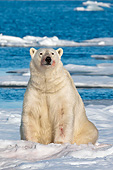 BEA 06 KH0061 01
