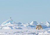 BEA 06 KH0093 01