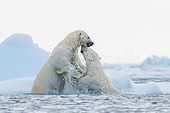 BEA 06 KH0107 01
