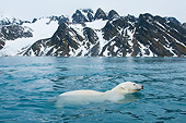 BEA 06 SK0085 01