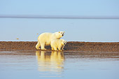 BEA 06 SK0200 01