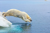 BEA 06 SK0208 01