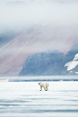 BEA 06 SK0262 01