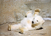 BEA 06 GR0002 01