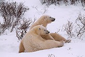 BEA 06 HB0003 01