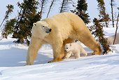 BEA 06 KH0001 01