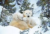 BEA 06 KH0014 01