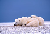 BEA 06 NE0003 01