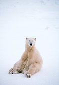 BEA 06 NE0027 01