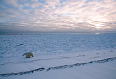 BEA 06 NE0034 01