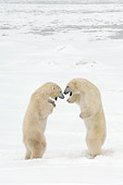 BEA 06 NE0069 01