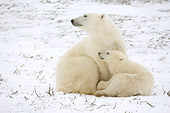 BEA 06 NE0097 01