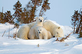 BEA 06 NE0104 01