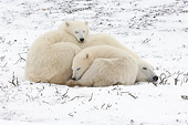 BEA 06 NE0107 01