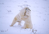 BEA 06 RF0068 01