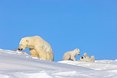 BEA 06 SK0001 01