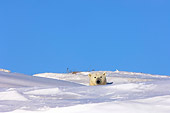 BEA 06 SK0026 01
