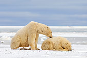 BEA 06 SK0034 01