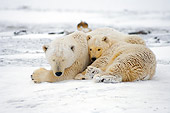 BEA 06 SK0038 01