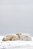 BEA 06 SK0040 01