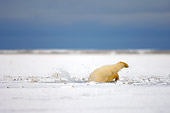 BEA 06 SK0052 01