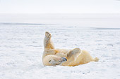 BEA 06 SK0119 01