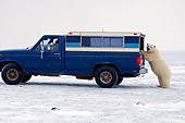 BEA 06 SK0126 01