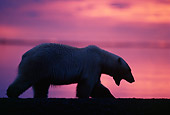 BEA 06 TL0018 01