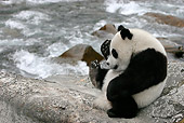 BEA 07 KH0001 01