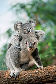 BEA 10 GL0007 01