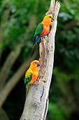 BRD 01 AC0023 01