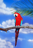 BRD 01 RK0097 03