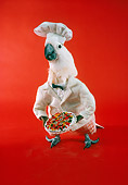 BRD 01 RC0005 01