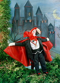 BRD 01 RC0011 01