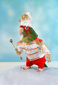 BRD 01 RC0014 01