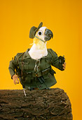 BRD 01 RC0016 01