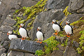 BRD 04 SK0002 01