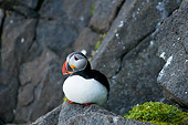 BRD 04 SK0010 01