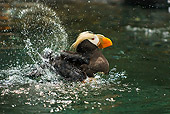 BRD 04 TL0006 01
