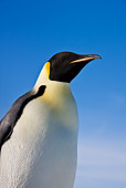 BRD 05 KH0013 01