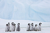 BRD 05 KH0030 01