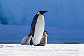 BRD 05 KH0037 01