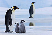 BRD 05 KH0039 01