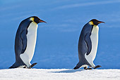 BRD 05 KH0043 01